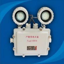 Đèn chiếu sáng khẩn cấp Paragon CHỐNG NỔ BCJ-4B